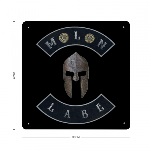 Molon Labe with Spartan Helmet and Double 45 ACP Case Heads - Made in USA Print on Metal with dimension